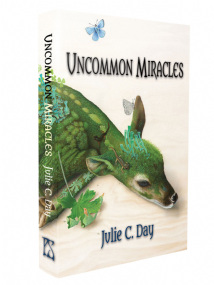 Uncommon Miracles [hardcover] by Julie C. Day